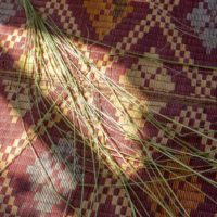 weaving-materials-at-Injalak-Hill-200x200 Mikinj Valley (Red Lily) Arnhem Land sightseeing tour – departs Darwin